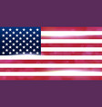 the national flag of the country of united states vector image vector image