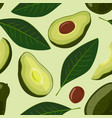 avocado seamless pattern of vector image