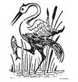 bird catching fish vintage vector image