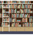 Bookcase With Ladder vector image vector image