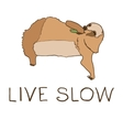 cute eating sloth vector image vector image