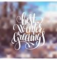 hand lettering written best winter greetings vector image vector image