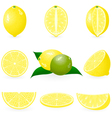 lemon icons vector image vector image
