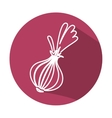 onion fresh vegetable icon vector image vector image