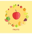 Set of Fruit in Flat Design vector image vector image