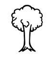 thin line tree icon vector image vector image