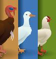 Farm animal design vector image