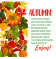 autumn season poster with pumpkin and fall leaf vector image vector image
