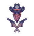bandit holding gun vector image