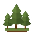 canadian evergreen tree pine vector image