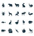 zoo icons set with raven chimpanzee bug and vector image