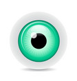 eye on white background with shadow vector image vector image