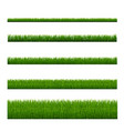 grass with isolated white background vector image