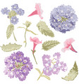 hand drawn flowers set vector image vector image