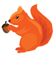 squirrel acorn vector image