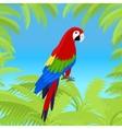 Ara Parrot Flat Design vector image vector image