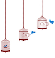 bird leaving cage and return in cage vector image