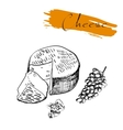 Cheese types Delicious fresh cheese variet cheese vector image vector image