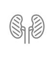 sore human kidneys line icon renal cysts kidney vector image vector image
