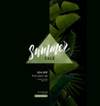 dark summer poster with banana plam leaves and vector image