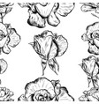 seamless pattern of highly detailed hand drawn vector image vector image
