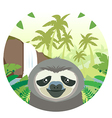 Sloth on the Jungle Background vector image vector image