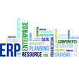 word cloud erp vector image vector image