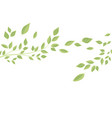 branches and green leaves vector image vector image