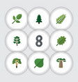 flat icon bio set of wood foliage forest and vector image vector image