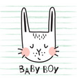 baboy bunny vector image