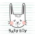 baby boy bunny vector image