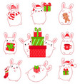 collection of cute rabbits vector image