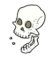 comic cartoon laughing skull vector image vector image