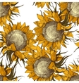 seamless ornament with sunflowers vector image vector image
