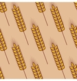 Seamless pattern of cereal ears vector image