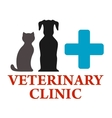 veterinary clinic icon vector image