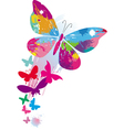 butterflies and line brushes vector image vector image