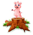 cute baby pig posing on tree stump vector image vector image