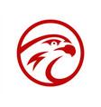 Falcon or hawk head sport logo mascot design