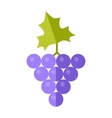 Grape In Flat Style Design vector image vector image