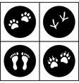 Human and bird feet cat dog paws black white flat vector image