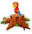 cartoon parrot on tree stump vector image vector image