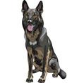 Color sketch black dog German shepherd breed