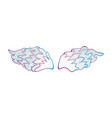 colorful angel wings vector image