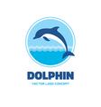 Dolphin - logo concept vector image vector image
