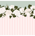 horizontal striped pattern with white rose peony vector image vector image