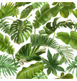 seamless pattern with green tropical leaves vector image vector image