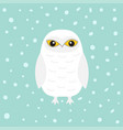 white snowy owl sitting bird with wings snow barn vector image vector image