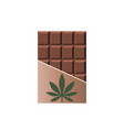 chocolate bar with marijuana leaf narcotic sweets vector image vector image