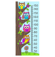 growth measure with funny owls vector image